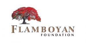 Fundacion Flamboyan